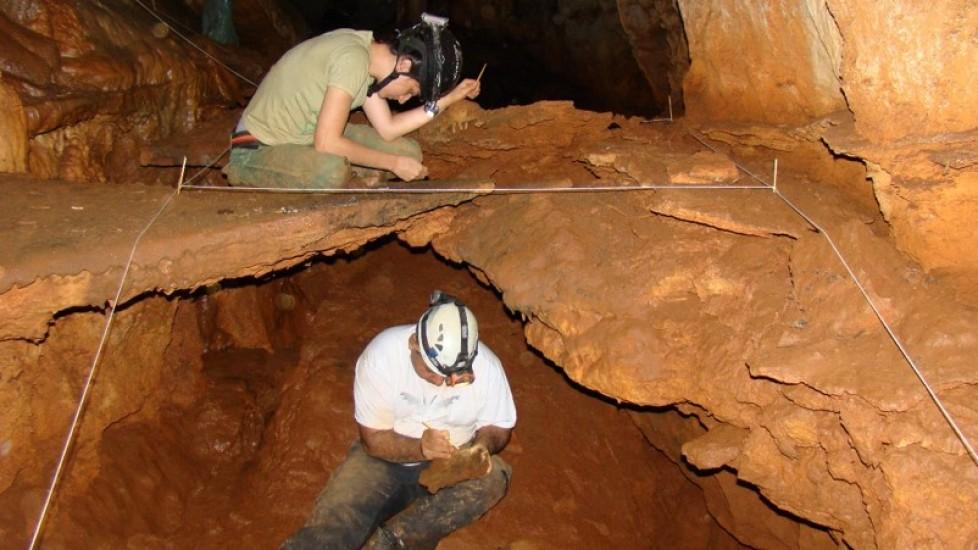 Avaliação dos métodos de coleta utilizados em cavernas brasileiras